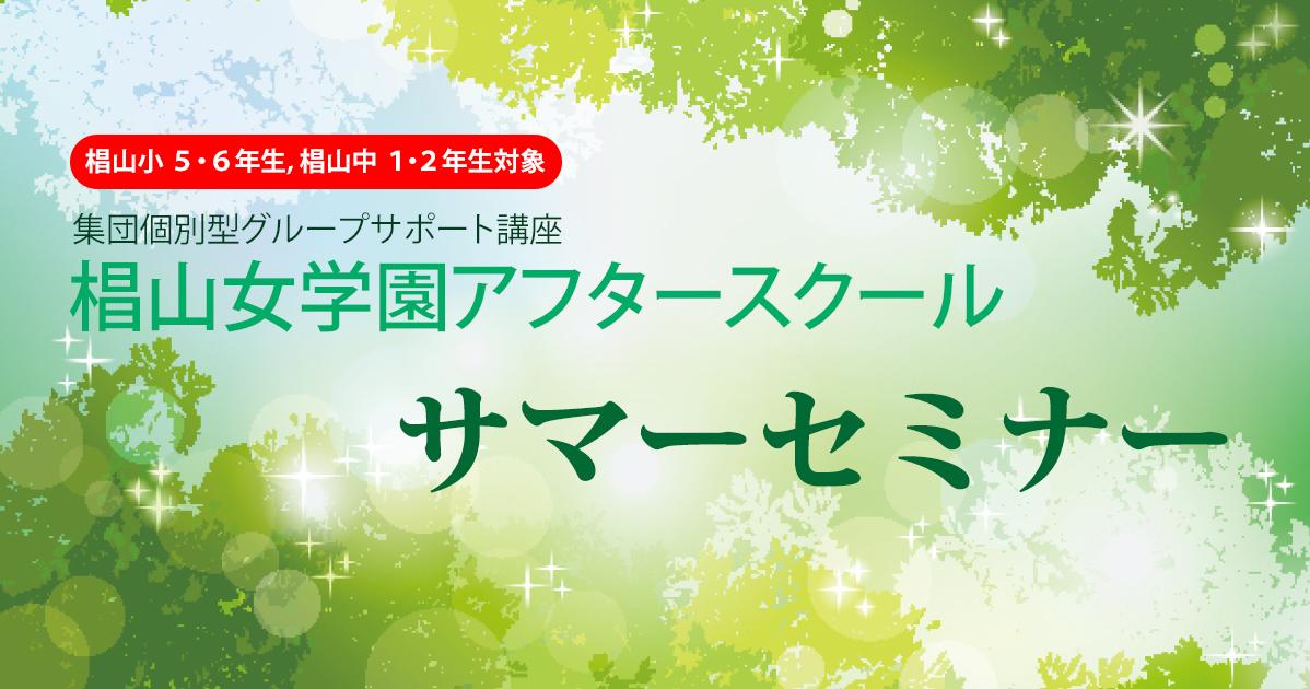 集団個別型グループサポート講座椙山女学園アフタースクール『サマーセミナー』