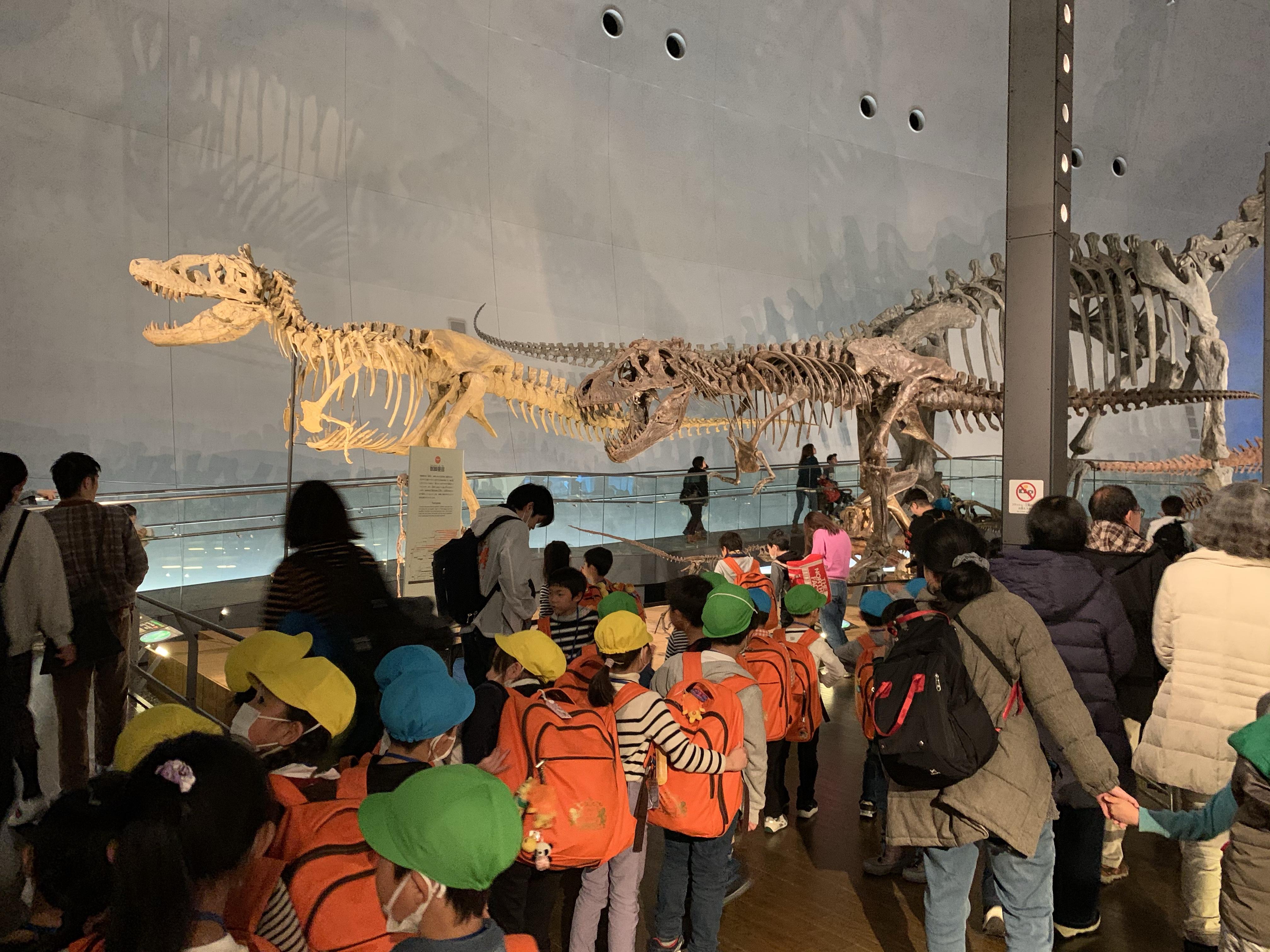 恐竜博物館 館内1