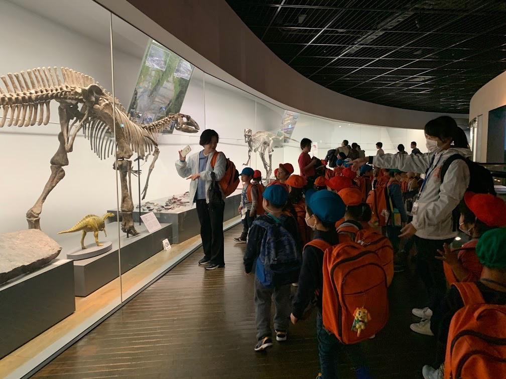 化石見学の様子1