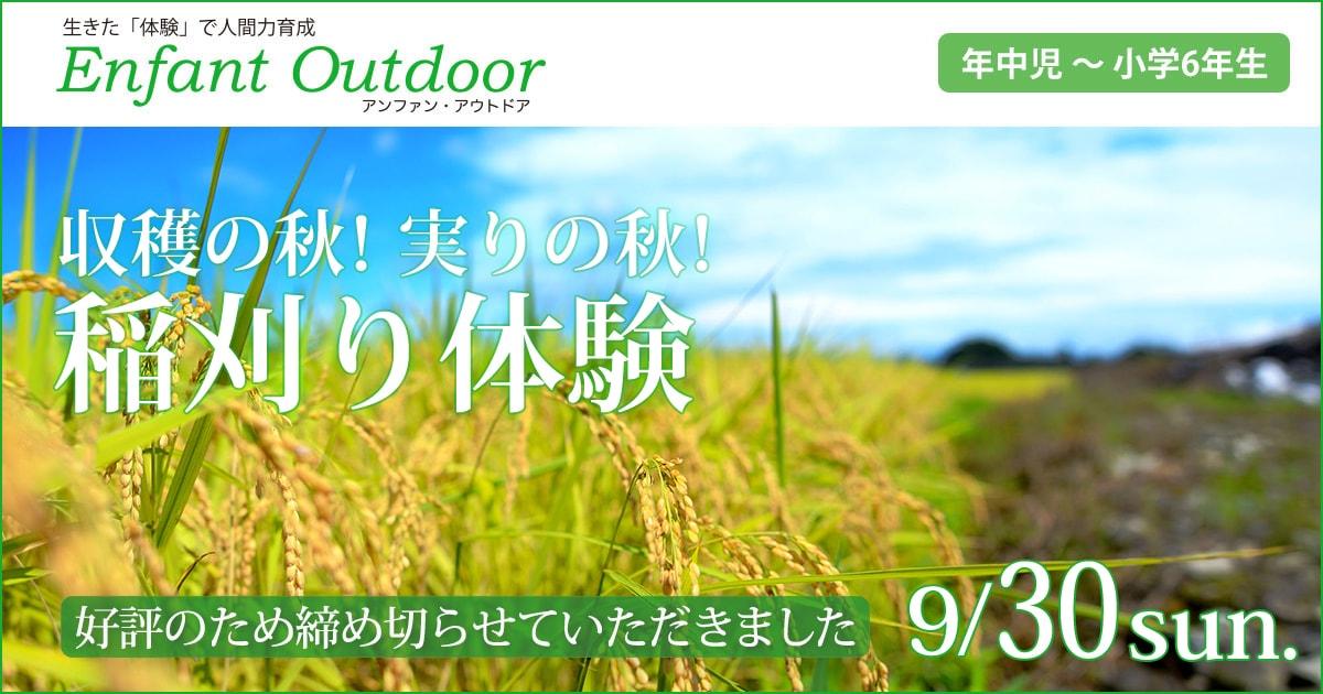 〈年中児・年長児・小学生〉収穫の秋!実りの秋!「稲刈り体験」