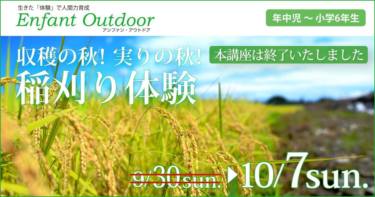 〈年中児・年長児・小学生〉収穫の秋!実りの秋!「稲刈り体験」〜荒天が予想されるため 日程順延しました〜