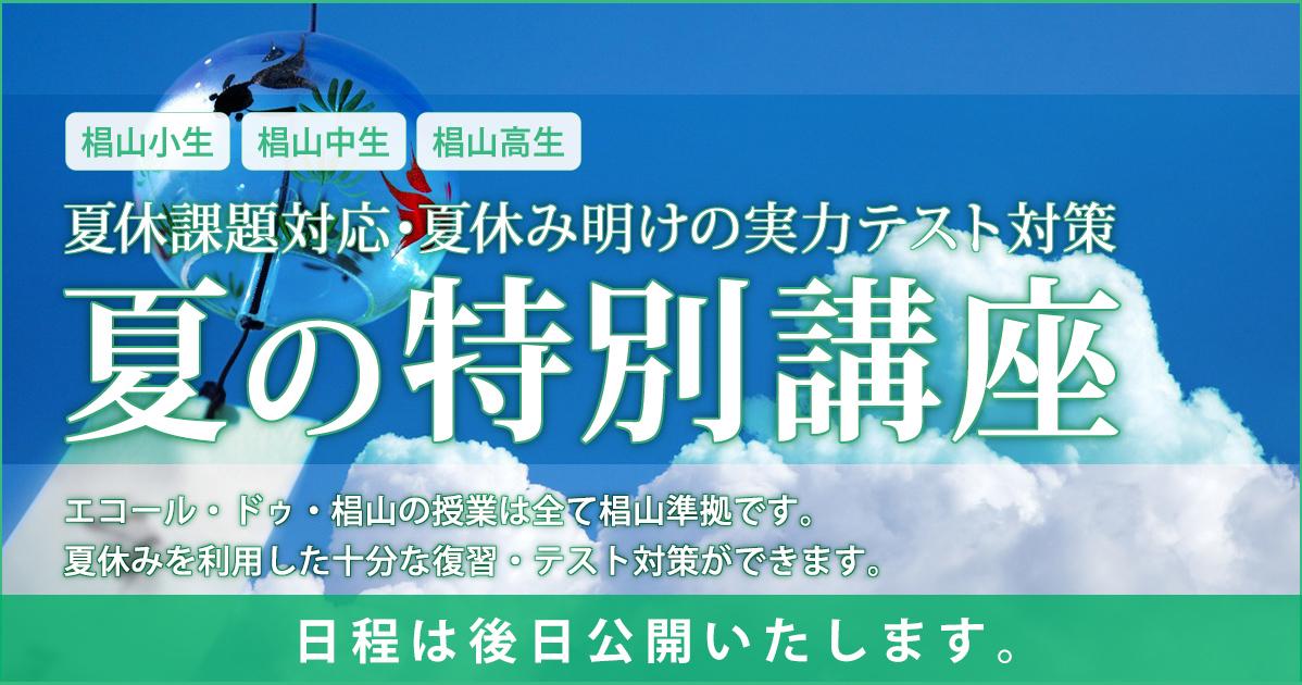 〈椙山小・椙山中・椙山高生対象〉夏の特別講座